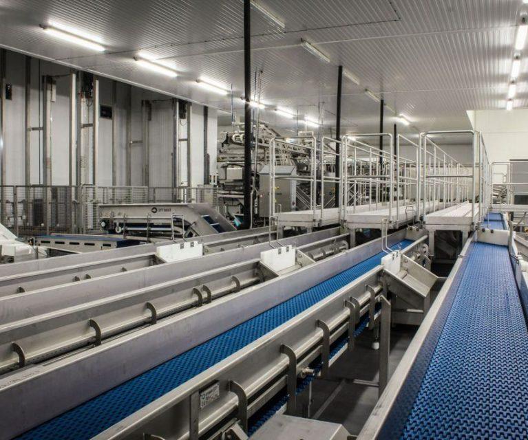 Congelagos Factory